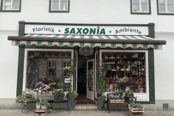 Bild 1 von Saxonia Floristik & Ambiente